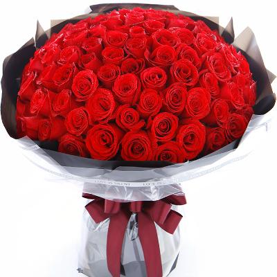 crna gora 101 ruža