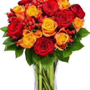 cvjećara kotor