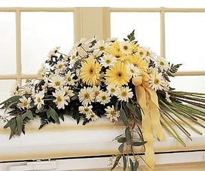 Cvjećara Bijelo Polje