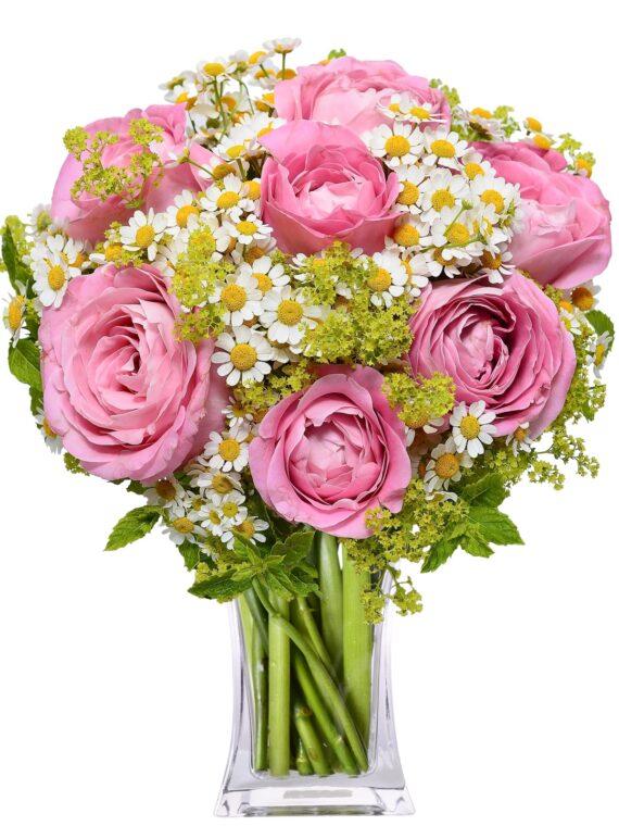 cvjećara podgorica
