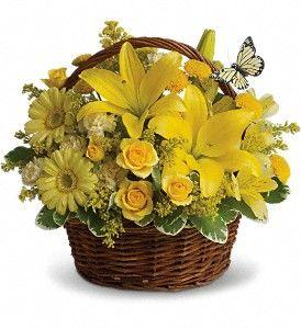 Dostava cvijeća u Baru